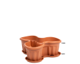 A Medium Planter for Three Plants in Terracotta with a Base to Catch any Spills
